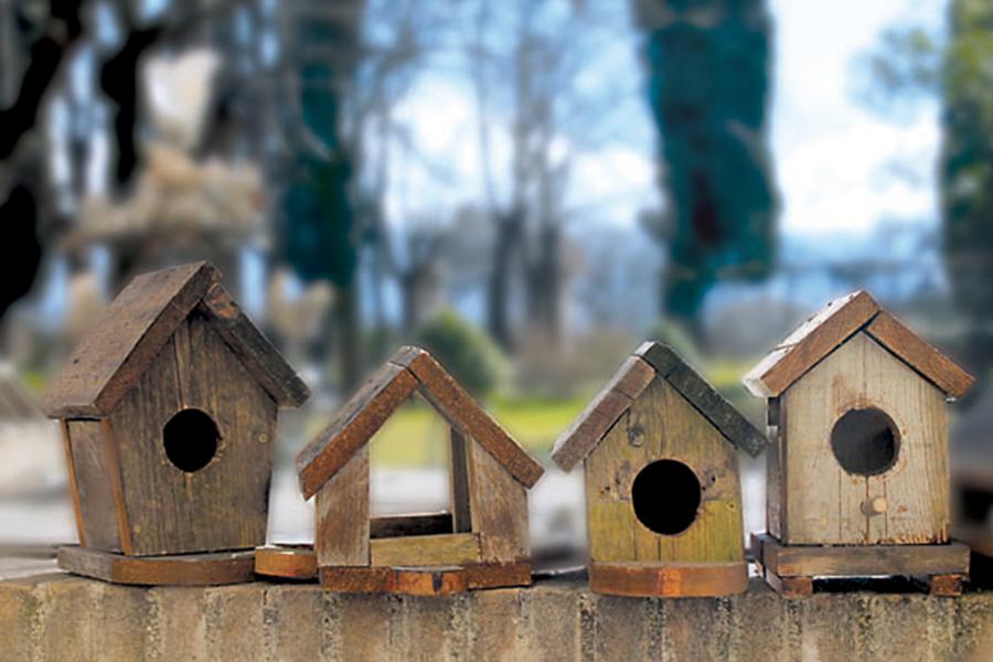 casette in legno Barbanera