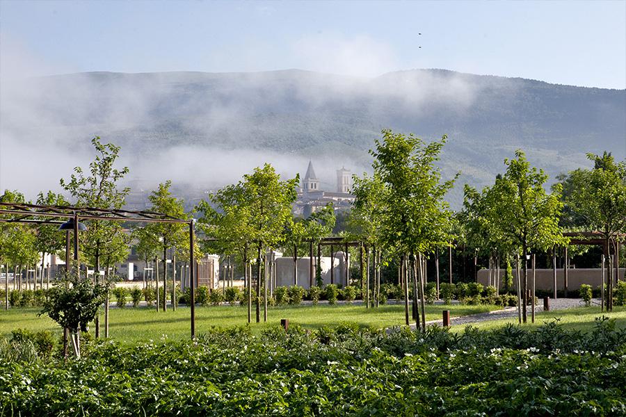 Vista giardino della sede Barbanera